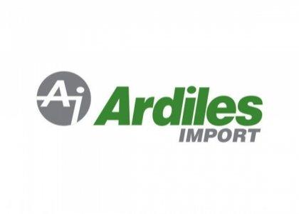 Ardiles
